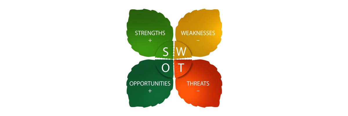Event organizer - SWOT analysis