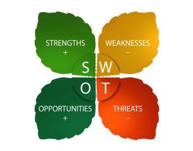 Organizator wydarzeń - analiza SWOT